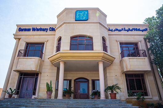 Vet in Abu Dhabi