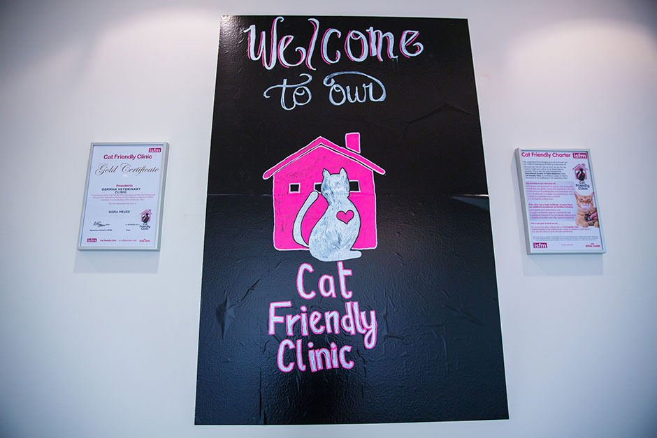 cat-friendly-clinic