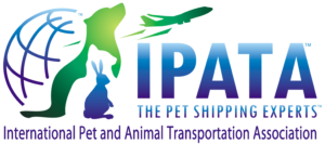 International pet relocation Abu Dhabi